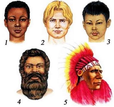 Украинская раса???