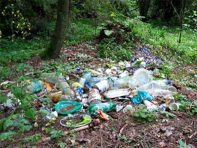 Франция запрещает пластиковую посуду