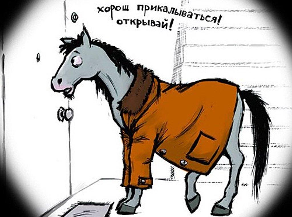 """Откуда пошло выражение """"Конь в пальто""""?"""